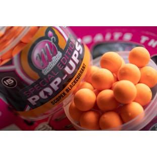 SPECIAL EDITION POP-UPS